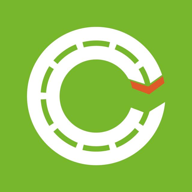 Connection Express logo green