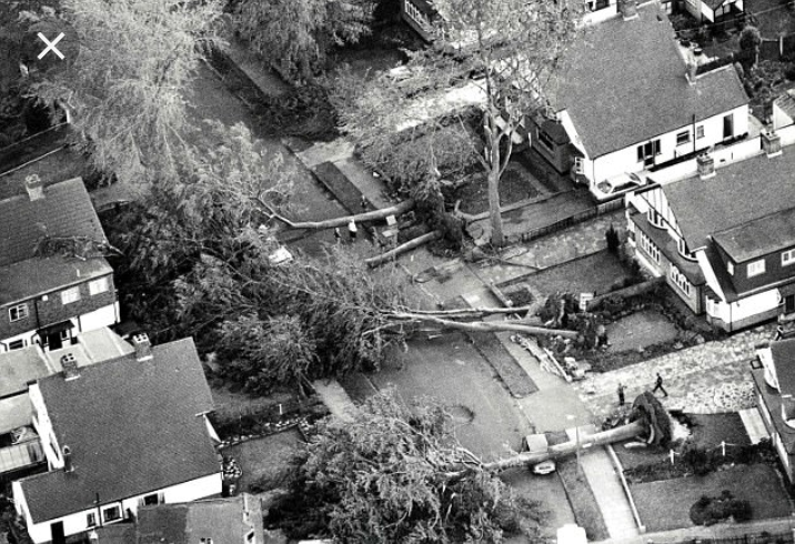 Trees blown over road Great Storm 1987